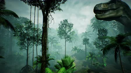 tirannosauro : T Rex Tyrannosaur Dinosaur animation in jungle. rendering realistico. 4k.
