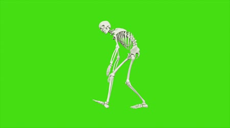 zombi : Skeleton dancing. Seamless loop animation on green screen.