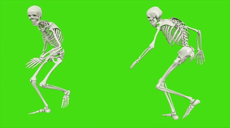 perili : Skeleton walk. Seamless loop animation on green screen.