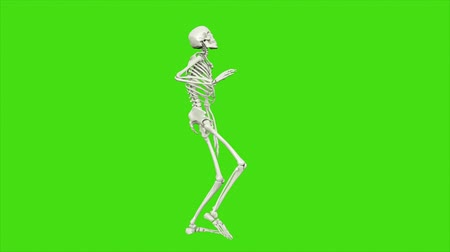 monstro : Skeleton dancing. Seamless loop animation on green screen.