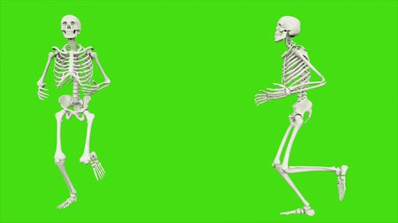 render : The skeleton runs. Seamless loop animation on green screen. Stok Video