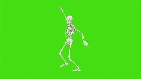 kosterní : Skeleton dancing. Animation on green screen.