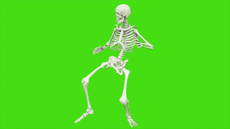kosterní : Skeleton dancing. Seamless loop animation on green screen.