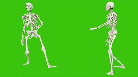 render : Skeleton walk. Seamless loop animation on green screen.