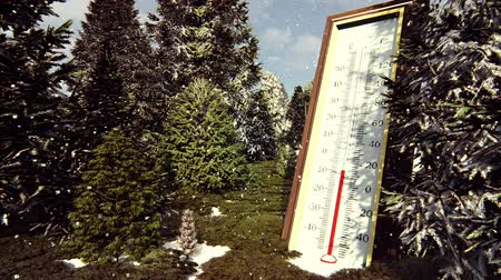 temp : Thermometer Fahrenheit Celsius in forest shows lowering temperature. The concept of global cooling. Stock Footage