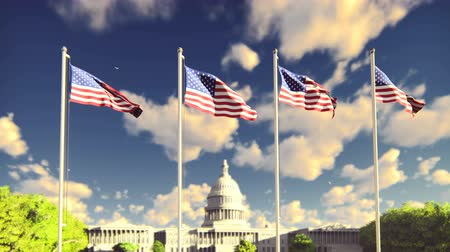 4分の1 : The American flags flutters in the wind on a sunrise against the blue sky and the Capitol. The symbol of America and the American national holiday.