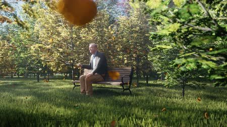 nagyapa : Autumn Color Park. View of colorful autumn trees on a Sunny autumn day. Old grandpa is sitting on a Park bench. Fly autumn leaves.
