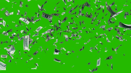 piyango : Flying dollar bills in fast motion in front of a green screen. Digital animated background with dollar bills in the wind. Chroma key 4k compositing.