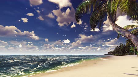 экзотичность : Branches of palm trees and tropical plants in the wind at sunny day. Beautiful summer loop background.