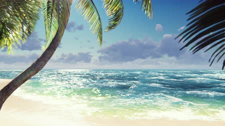 боке : Branches of palm trees and tropical plants in the wind at sunny day. Beautiful summer loop background.