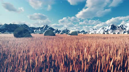 соя : Mystical view, unusual grass, old skulls on the ground, blue sky with clouds, morning sun and mountains in the distance.