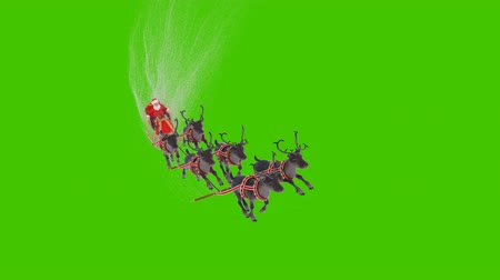 Santa Claus on a sleigh with Christmas reindeer. Animation in front of green screen.