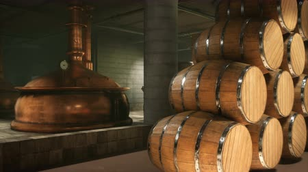 bira fabrikası : Warehouse with wooden barrels for wine, whiskey or other alcohol. Wooden big barrels lie in several rows. Looped Animation. Stok Video