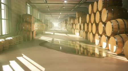 bira fabrikası : Warehouse with barrels for wine, whiskey or other alcohol. Barrels lying in several rows. Looped Animation.