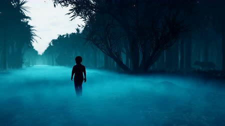 A little boy got lost in a dark scary mystical misty forest. A fairy forest with tall trees in a thick fog and terrible creatures in the dark thicket. Vídeos