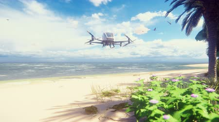 unmanned aircraft : An unmanned passenger air taxi lands on a tropical beach. The concept of the future driverless taxi. 3D rendering of animation. Stock Footage