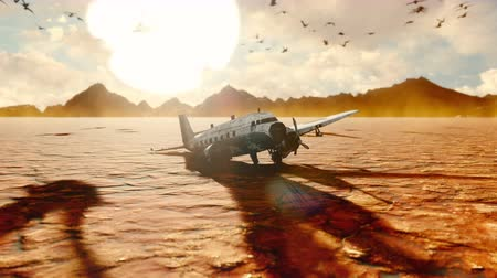 catástrofe : The crashed plane is in the desert. Apocalyptic view of the hot desert. Vídeos