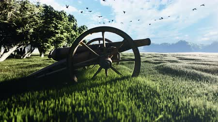 pozlacený : Medieval Cannon in a field in the middle of green grass at sunrise before the battle.