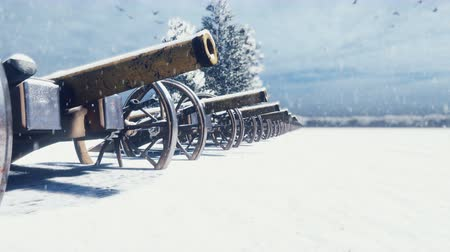 yaldızlı : Cannons are on a winter field in the snow on a cloudy day, before the battle. Falling snow. Cannons ready to fight.