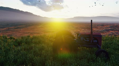 földműves : An old tractor stands near a field at sunset in the evening. Agriculture and environment.