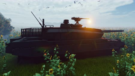blindado : Military tank at sunset on a field in the middle of sunflowers.