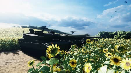 турель : Military tanks on a clear Sunny summer day on a field in the middle of sunflowers.