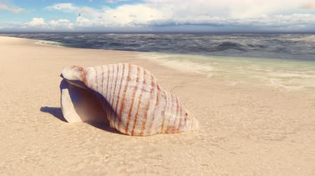 mollusks : Beautiful seashell on a sandy beach, washed by the ocean wave. Beautiful loop 3D animation.