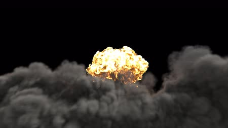 nuclear power : The explosion of a nuclear bomb. Realistic 3D VFX animation of atomic bomb explosion with fire, smoke and mushroom cloud. Contains the alpha channel. Stock Footage