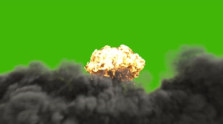 catástrofe : The explosion of a nuclear bomb. Realistic 3D animation of atomic bomb explosion with fire, smoke and mushroom cloud in front of a green screen. Vídeos