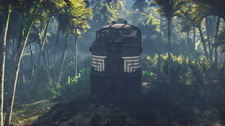 huni : Wrecked train lies in the jungle in the middle of palm trees and tropical vegetation Stok Video