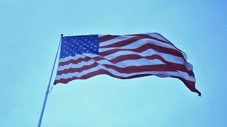 USA flag waving in the wind video Wideo