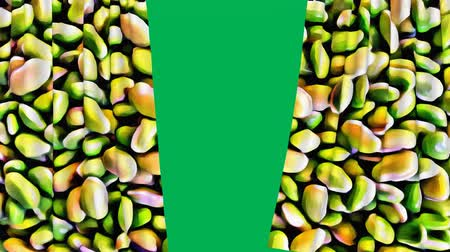 Beans design curtain opening with green screen background