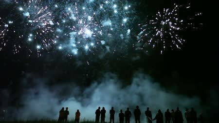 to celebrate : Collage of colorful fireworks exploding in the night sky with people watching it Stock Footage