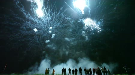 arife : Collage of colorful fireworks exploding in the night sky Stok Video