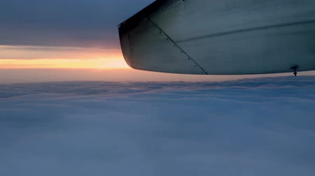 авиация : View from the inside of an airplane in flight during sunset and dusk. Стоковые видеозаписи