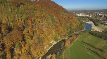 невероятный : Aerial, top view from Drone: flying over the mountain with forest and river. Forest yellow autumn color. River at the foot of the mountain.