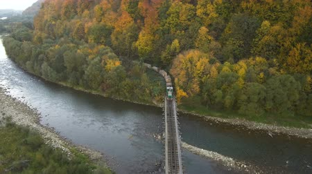 Aerial, top view from Drone: The train carries a felled forest. Damage to nature Wideo