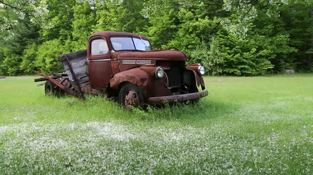 jabłka : Old rusty farm truck under a crab apple tree