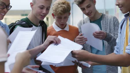 milestone : Group of teenage students are getting their exam results. They are comparing grades happily. Stock Footage