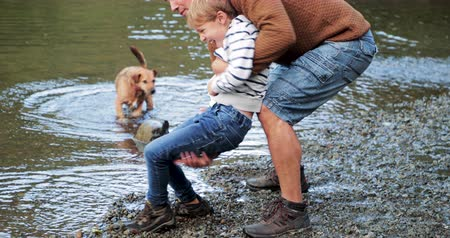mischief : Little boy is playing near the edge of a lake before his father playfully picks him up and pretends to dip his head in to the water. Stock Footage