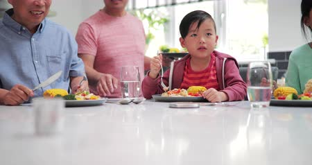 famílias : Little boy is enjoying a stir fry dinner while with his family at home. He is eating a piecce of chicken from his plate. Stock Footage