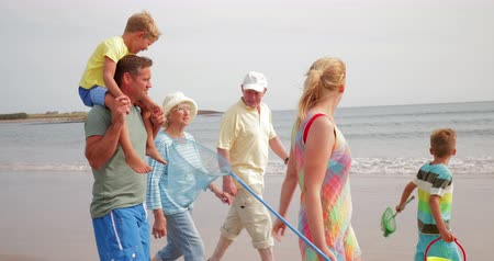 father of waters : Side view, tracking shot, of a family walking on the beach while on holiday. Stock Footage