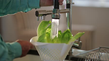 секунды : A close-up shot of an unrecognizable person washing lettuce under the sink. Стоковые видеозаписи