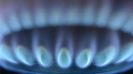 fornalha : gas flame