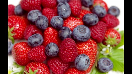 ягода : mixed fresh berries isolated on withe Стоковые видеозаписи