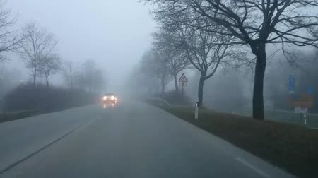 nevoeiro : Driving Bad Weather Dense Fog. View from car driver. Bad weather in Germany.