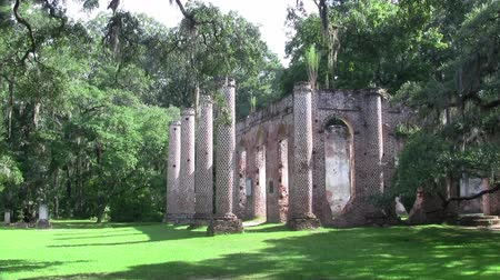 Old Sheldon Church Ruins - The Pillars of the Old Church in Northern Beaufort County, South Carolina with Trees and Green Grass