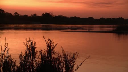 Romantic Sunset on the Okavango River with Beautiful Orang Colors in Namibia, Africa Stock Footage