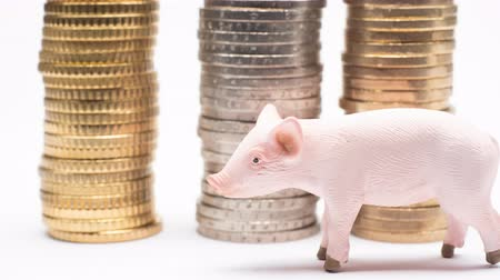 empilhados : Small pink piggy oversees growth of Euro Coins on stack, which are rising on white background and showing business, saving, growth, economic concept. Vídeos