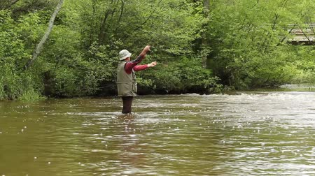 waders : fly fisherman on a small trout stream Stock Footage